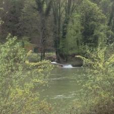El Doubs y afluente